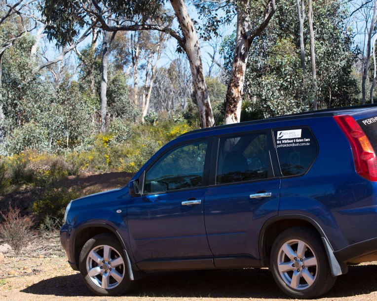 car-toodyay-golf-rp-aug16-dsc_4431-4x5a