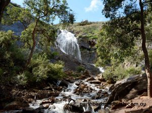 The stunning Lesmurdie Waterfall in August 2018