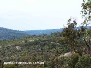 Views over the Perth Hills on the Zig Zag Scenic Drive