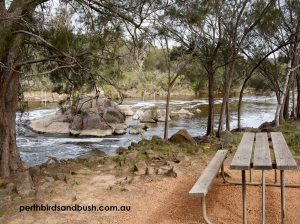 The Swan River in Walyunga National Park.