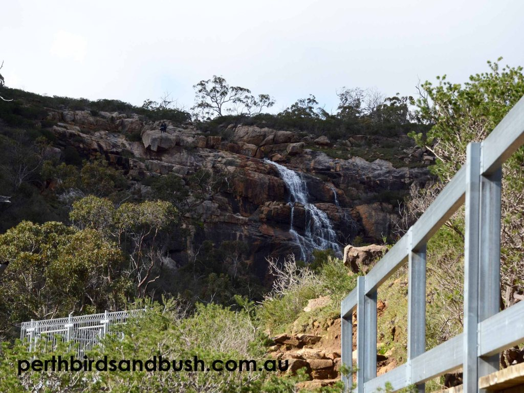 The Sixty Foot Waterfalls and the first lookout in Banyowla Regional Park.